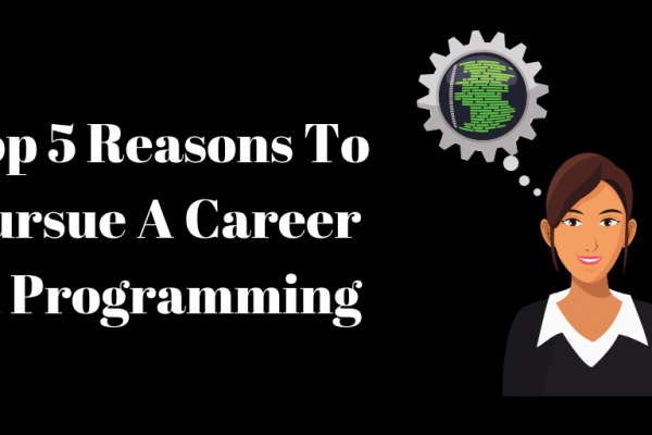 Top 5 Reasons To Pursue A Career In Programming