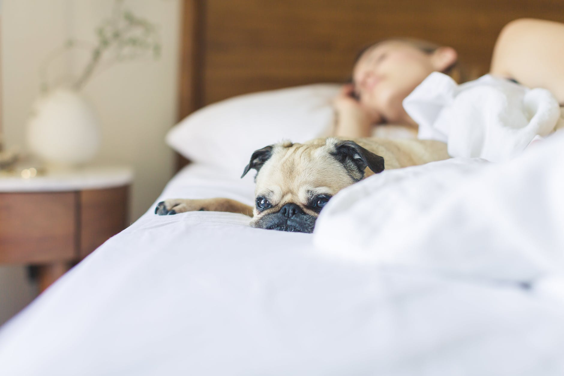 5 Ways to Improve the Quality of Your Sleep